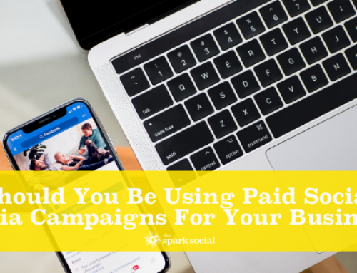 Should You be Using Paid Social Media Campaigns for Your Business?